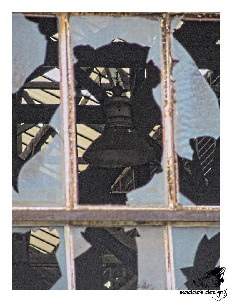 2008-1116-123520.jpg