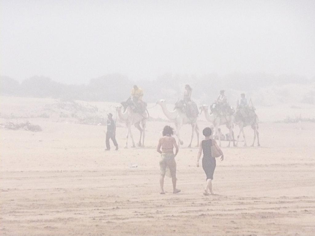 foggy beach 1