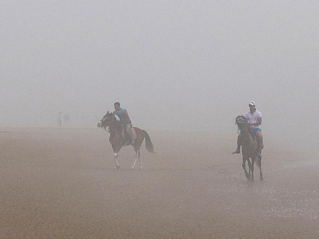 foggy beach 4