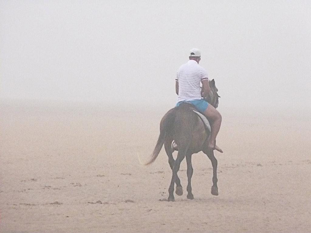 foggy beach 5